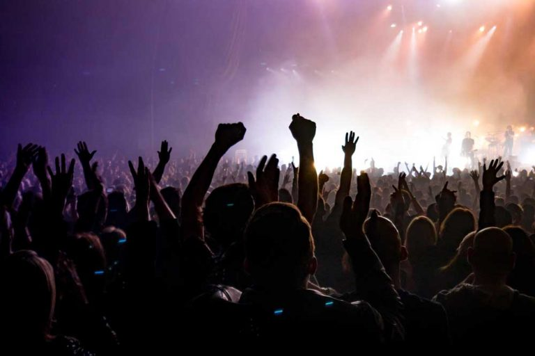 crowded concert representing skills needed for digital marketing
