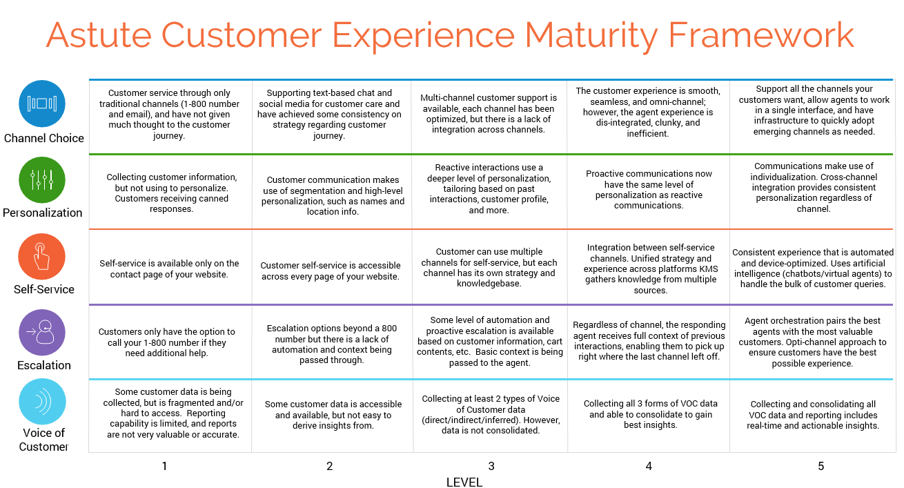 Astute's Customer Experience Maturity Framework